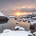 Snowy Bonsai by Ben Sheriff Photography
