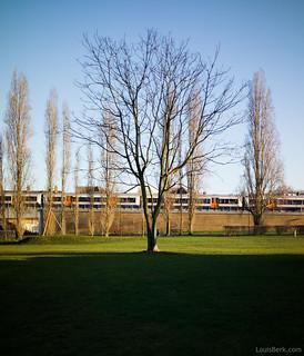 Lone Tree and Overground Train