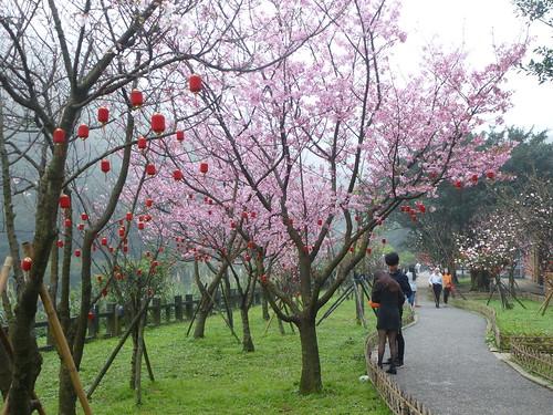 Ta-Taipei-Jinguashi (27)