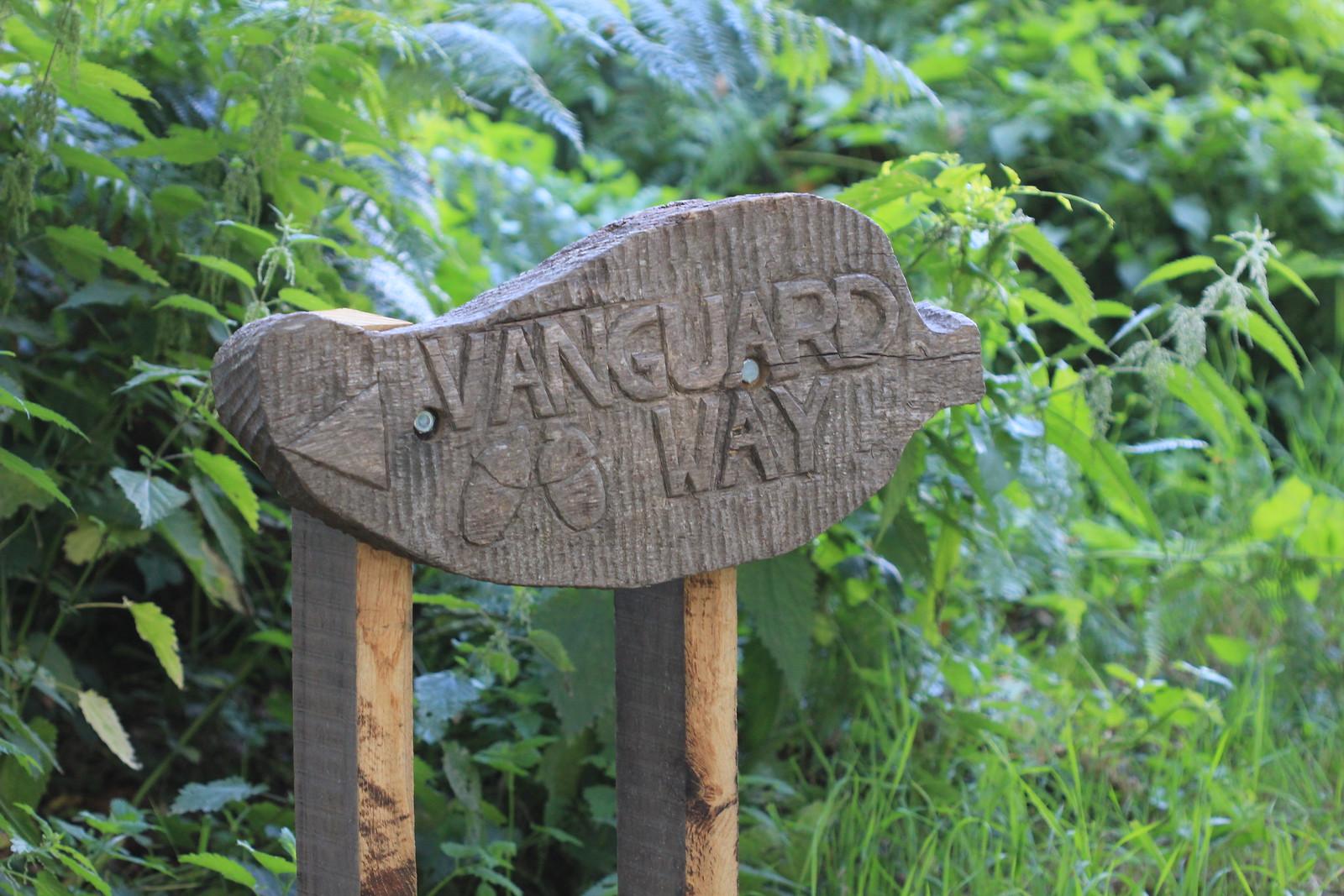Vanguard Way - Ashdown Forest