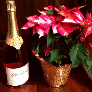 Sparkling Schramsberg and a poinsetta