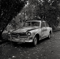 Old Volvo, Portland