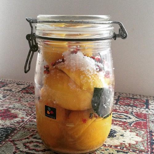 soolatud sidrunid
