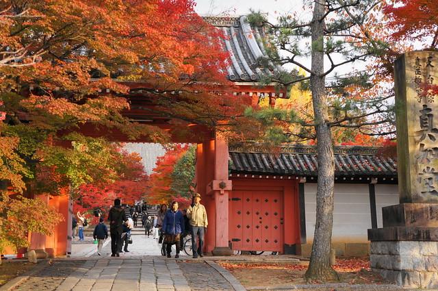 Kyoto 2012 10