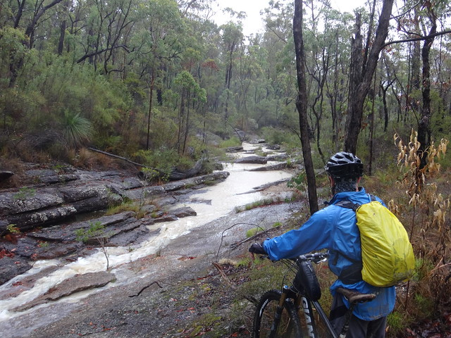 Flooded Creek