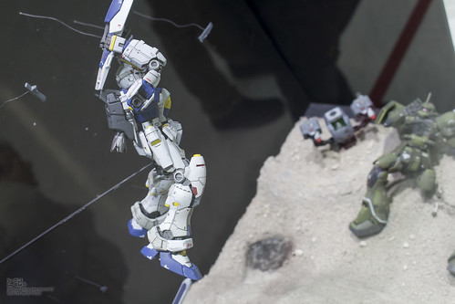 GBWC2014_World_representative_exhibitions-69