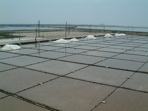 台灣西南海岸自清朝起即有鹽田與魚塭養殖之開發,廢棄塩田與魚塭之復育應成為海岸地景保育之標的。郭瓊瑩攝