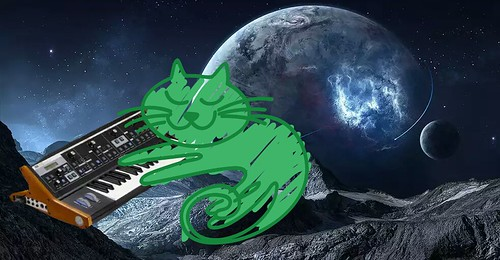 CAT playing a SYNTH in SPACE!