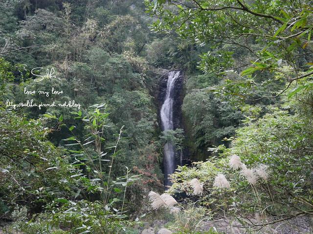 烏來景點內洞森林遊樂區 (37)