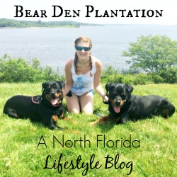 Bear Den Plantation