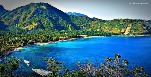 blue sea plant beach water landscape sand hill lombok