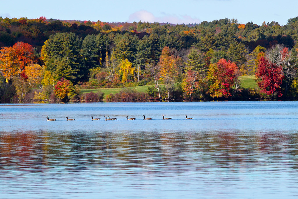 Fall Colors Massachusetts Nature Landscapes In Photography