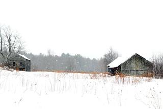 Snowfall at Spectacle Pond Farm