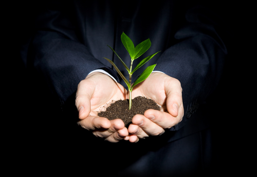 Strategies to Grow & Protect Your Business