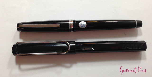 Review Pilot Elabo Fountain Pen - Soft Extra-Fine @JetPens @PilotPenUSA (3)