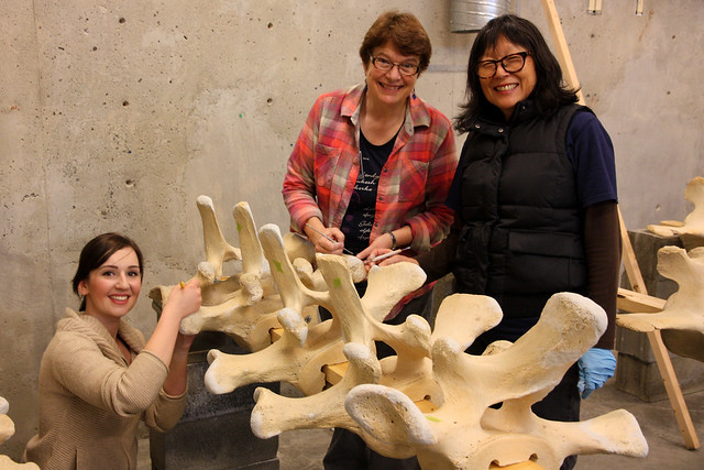 Whale Bone Repair Workshop Feb 8,9