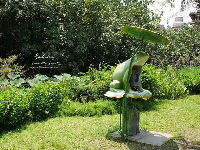 台北一日遊景點推薦植物園荷花蓮花池 (22)
