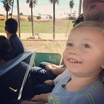 Up close to giraffes, rhinos, gazelles, and cheetahs on the African Safari Tram by bartlewife