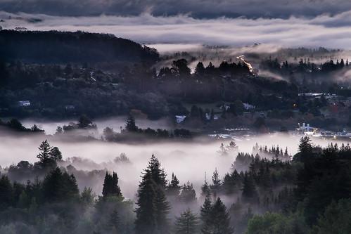 california morning santacruz mist fog sunrise day foggy lighttrails