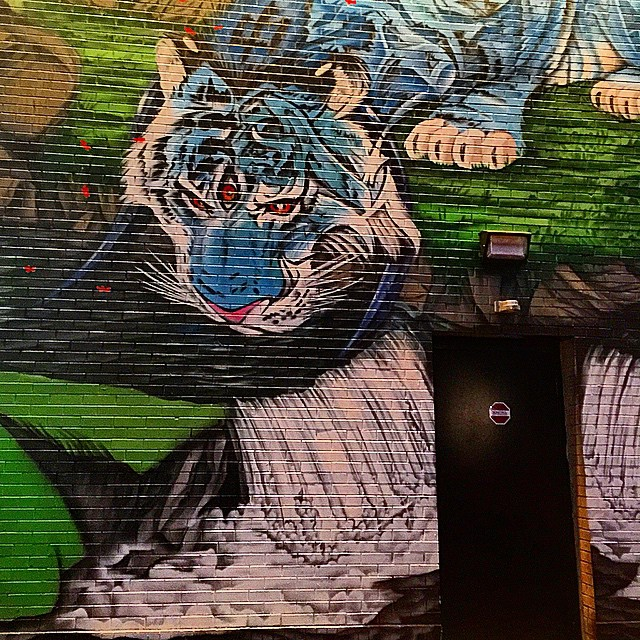 #tiger #streetart #graffiti in #Detroit