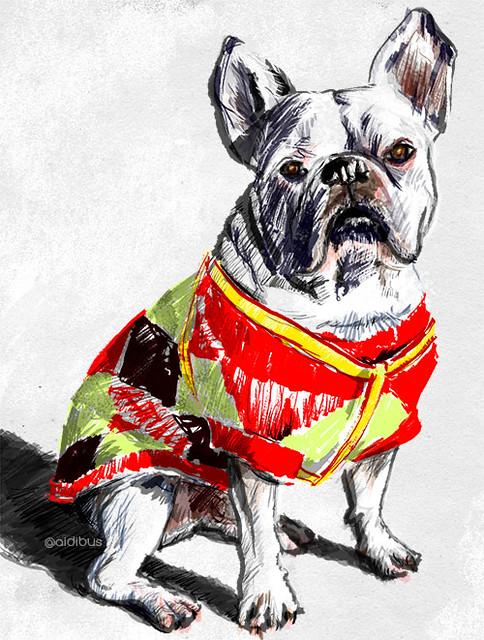 Bulldog vestido