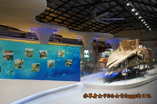 台南北門遊客中心婚紗美地水晶教堂17