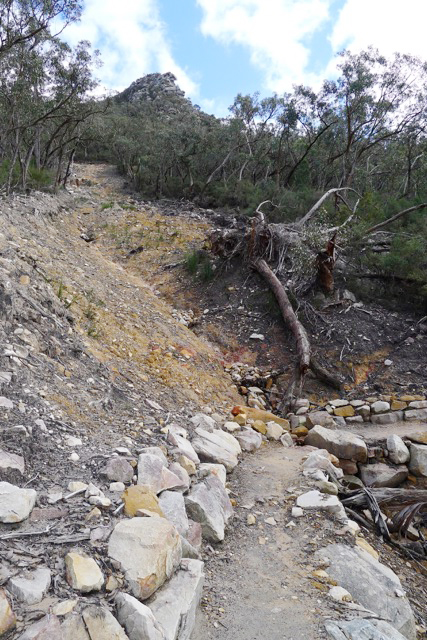The Mount Abrupt track has been reconstructed in several places where it crosses this landslide