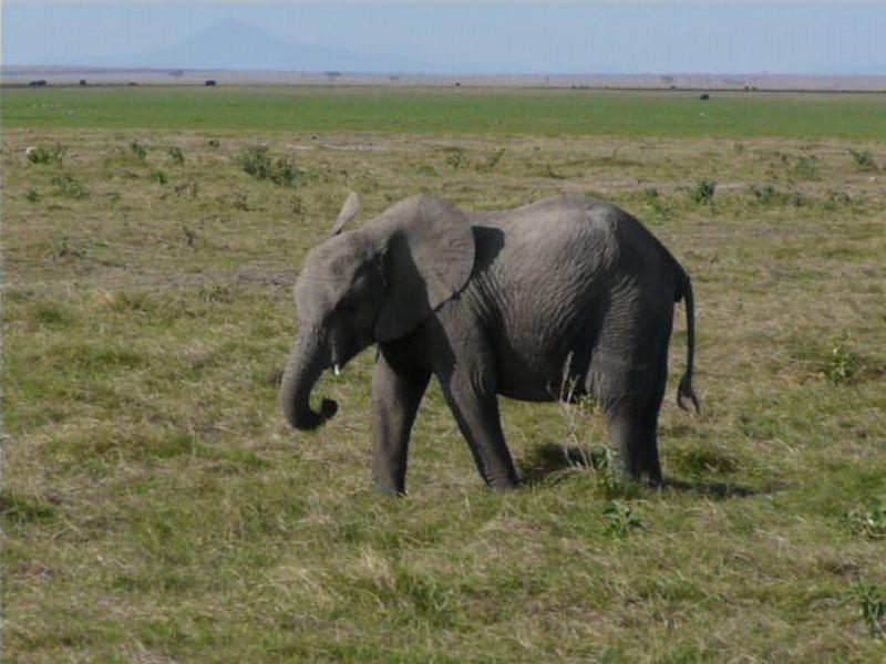 Kenia2007-0692
