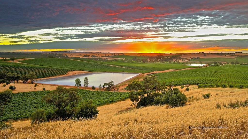 Lyndoch Sunset