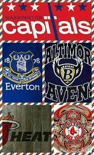 Favorite Team Pic. Collage