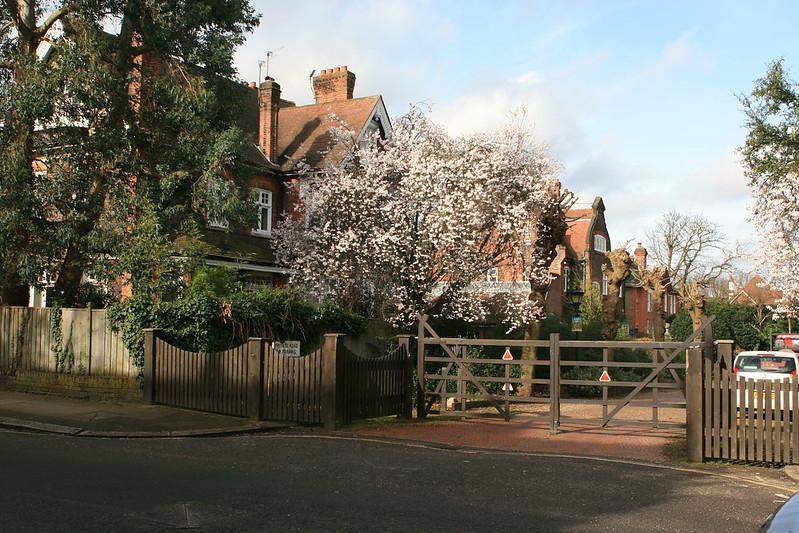 Wimbledon Village 147