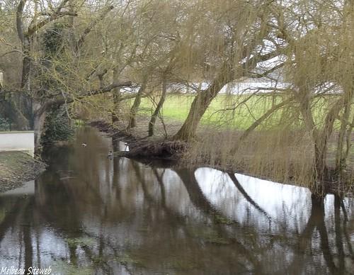 balade autour de l'étang