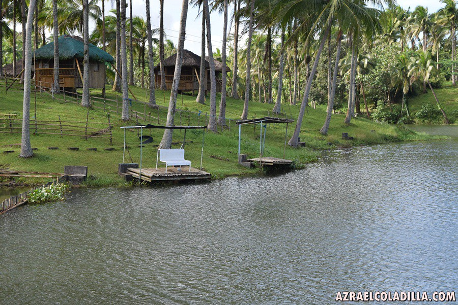 Lago fishing village best for camping and fishing for Santa cruz fishing spots