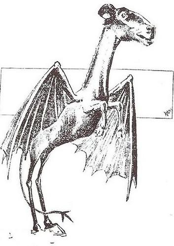 依據目擊者的口述畫出的「澤西惡魔」