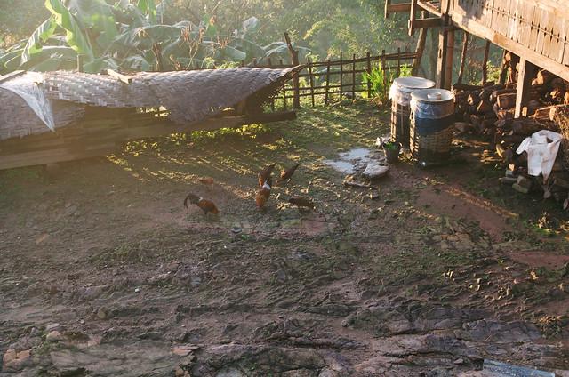Hiking around Kyaukme, Myanmar