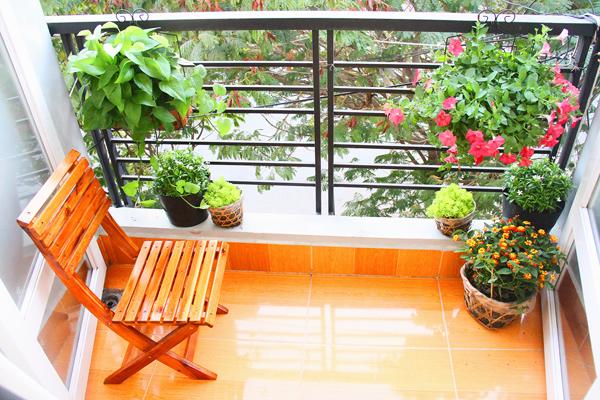 Vị trí đặt chậu hoa trong trang trí nội thất