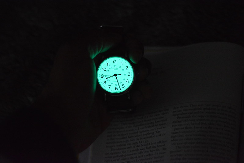 earth hour timex