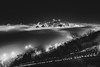 The fog in Pittsburgh from Mt. Washington in black and white
