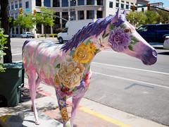 Painted Horses of Ogden Utah