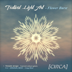 @ SaNaRae ~ Festival Light Art - Flower Burst