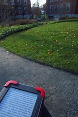 Reading the Nook in the Sunken Garden, Cambridge
