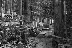 BW cemetery