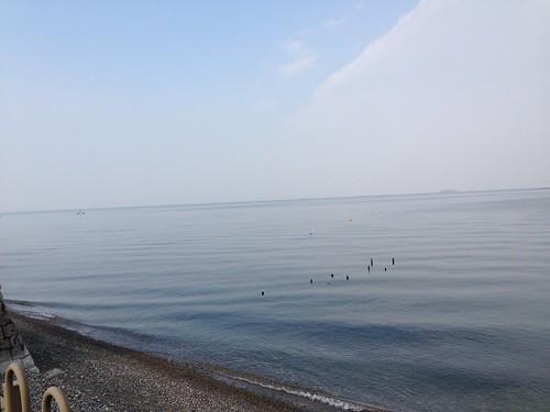 琵琶湖湖畔