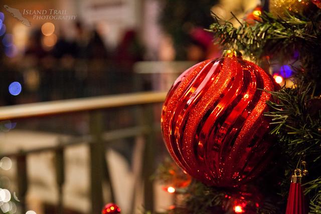 Festival of Trees - 2014.12.19-9534