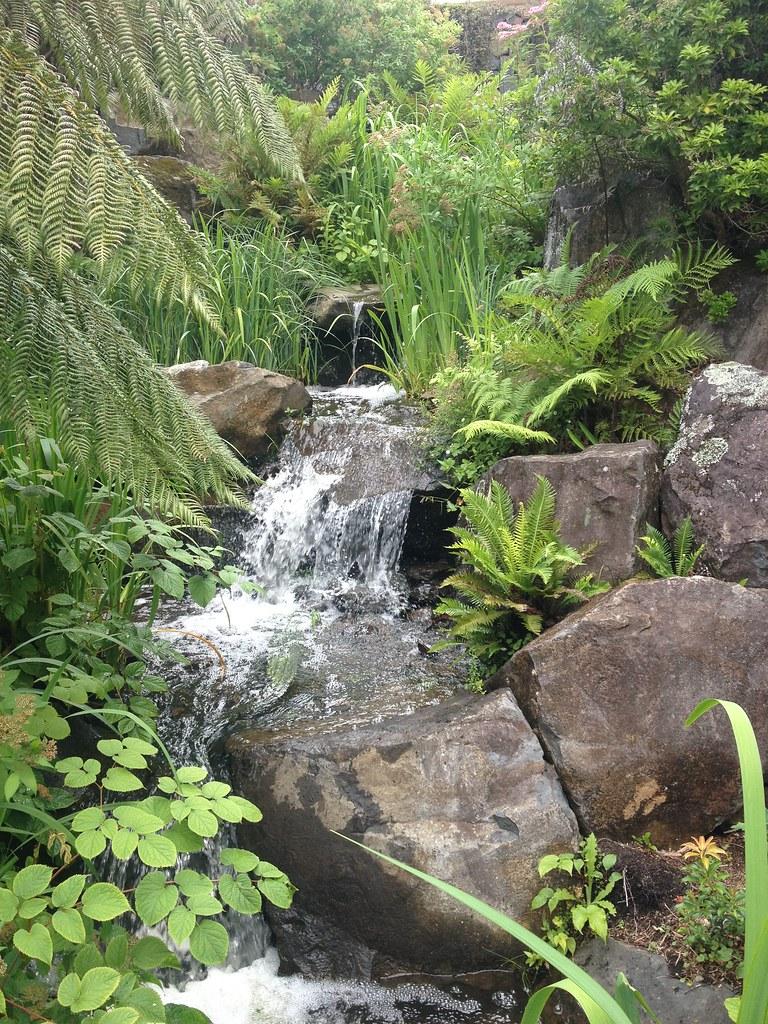 Waterfall at Mt Tomah Botanic Gardens