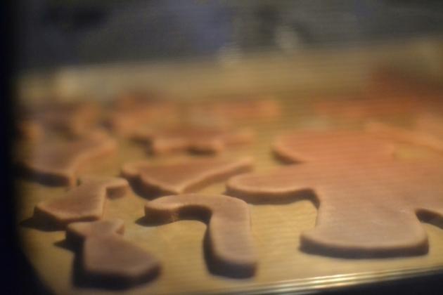 Lebkuchen (5)