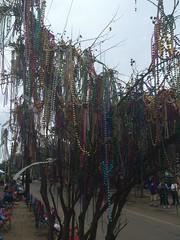 1135 Bead Tree