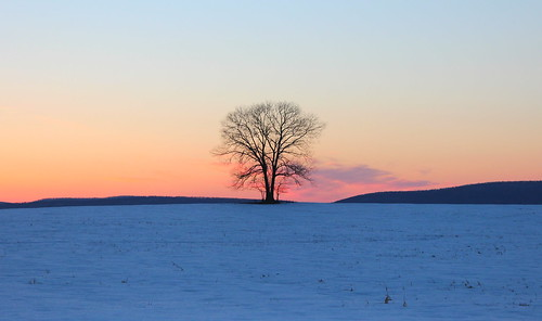 winter sunset snow dusk maryland vista magichour lonetree farmfield southmountain frederickcountymd middletownvalleymaryland