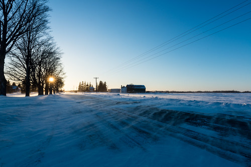 winter sun snow ontario canada cold tree field farmhouse rural landscape dusk pavement farm country freezing arctic powerlines flare electricity bluehour oakwood chill drift