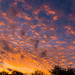 Sunset - Melbourne, Florida, 2/21/15 by Michael Seeley